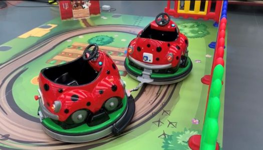 World of Rides launches the Baby Ladybird Train