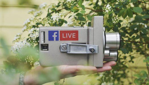 Gatorland launches Facebook Live program 'School of Croc'