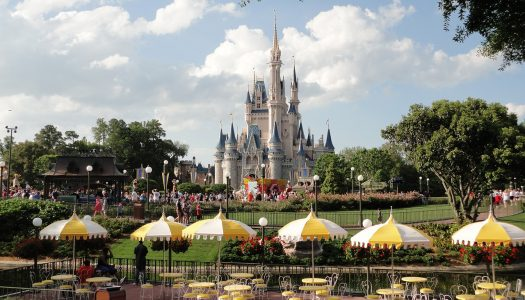 Walt Disney World pauses construction due to COVID-19 outbreak