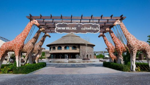 Dubai Safari Park set to open in October with new attractions