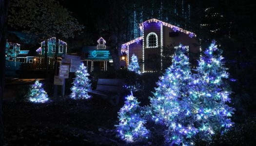 Fireworks, Santa and festive shows light up Dollywood's Smoky Mountain Christmas