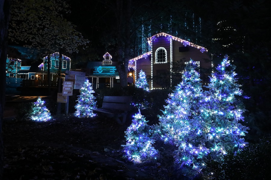 Dolly Wood Smoky Mountain Christmas 2021 Fireworks Santa And Festive Shows Light Up Dollywood S Smoky Mountain Christmas Interpark