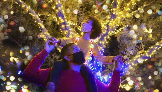 Christmas Celebration comes to SeaWorld San Antonio