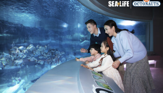 World's biggest Octonauts attraction opens at Changfeng Ocean World, Shanghai