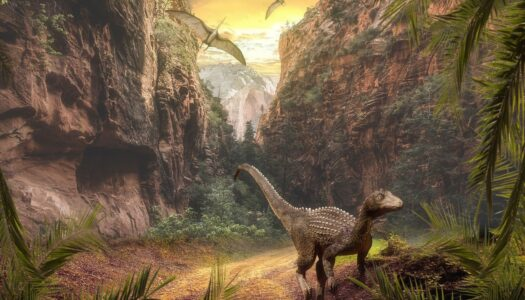 Six Flags Great Adventure launches Xpedition Dino