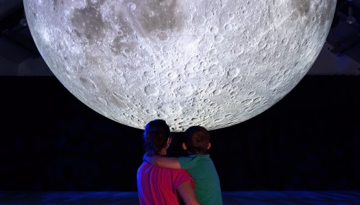 Longleat launches Under the Moon summer exhibition