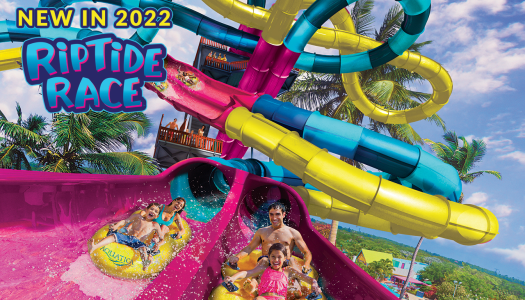 Dueling water slide to debut at Aquatica Texas in 2022